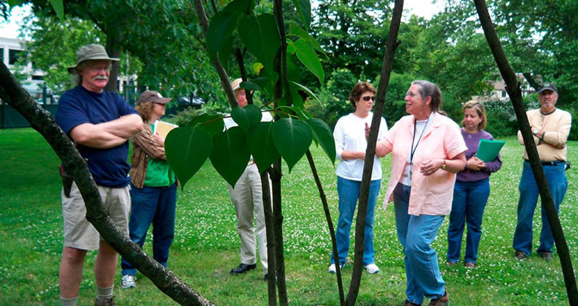 Docent leading a tour of the landscape