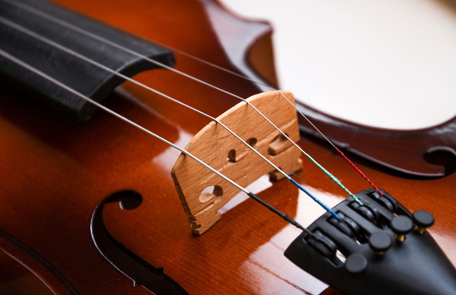 Suzuki Violin Rochester Ny